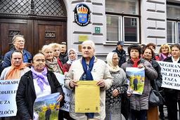 Föreningen för folkmordets offer och vittnen höll i demonstrationen och talespersonen Munira Subaic överlämnade ett öppet brev till den svenska ambassaden i Sarajevo.