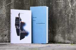 Författaren Ola Juléns 'Afrikas verkliga historia' ges ut postumt. Arkivbild.