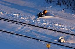 Vy Tåg AB kommer att sköta nattågstrafiken till övre Norrland och Jämtland. Arkivbild.